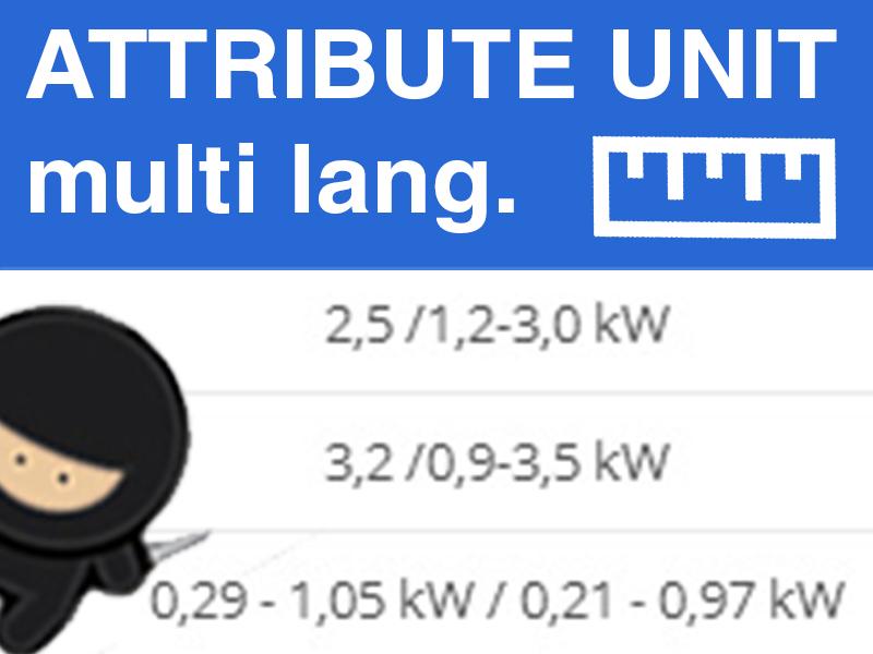 Attribute Custom Multilanguage Units
